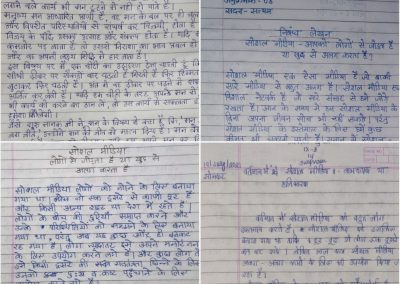 COLLAGE 1 HINDI ESSAY WRITING COMPETITION CLASSES IX-XII