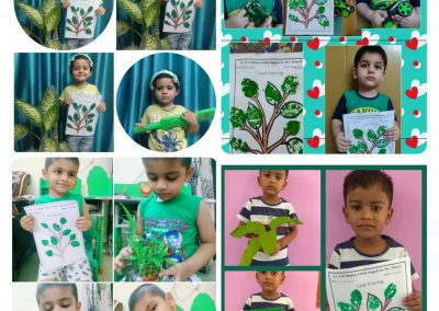 Collage-1-Pre-Primary (Green Day)