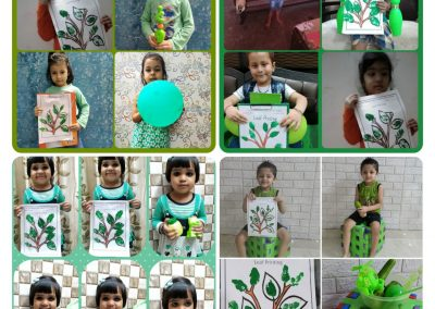 Collage-2-Pre-Primary (Green Day)