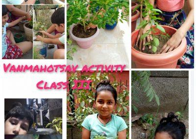 Collage1- Class 3-5 Van Mahotsaav Activity