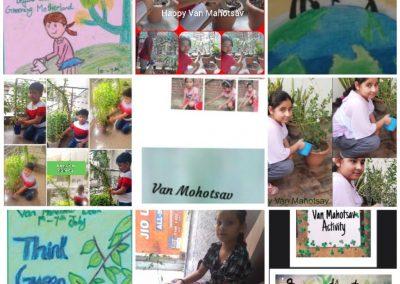 Collage3- Class 3-5 Van Mahotsaav Activity