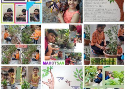 Collage4- Class 3-5 Van Mahotsaav Activity