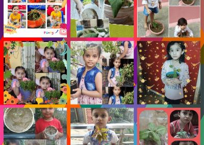Collage-8 Sow the Seed